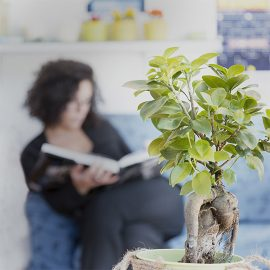 Chiara Martini pianta